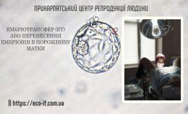 Ембріотрансфер (ЕТ) або перенесення ембріонів в порожнину матки.