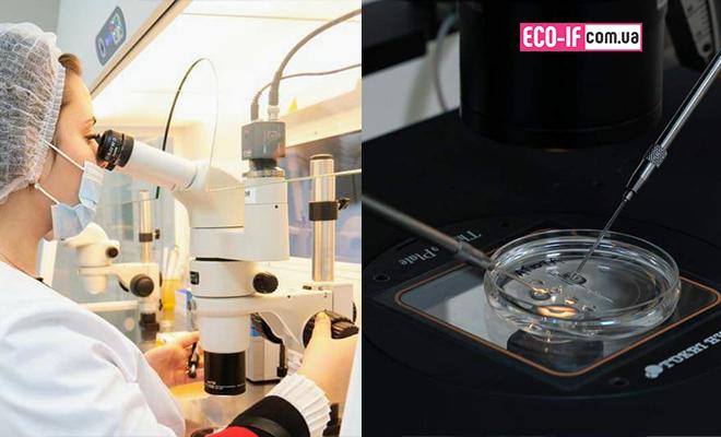 Ембріологи «ПЦРЛ» на практичному курсі «Клінічна ембріологія» у Києві.